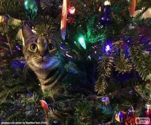 puzzel Kat en kerstboom
