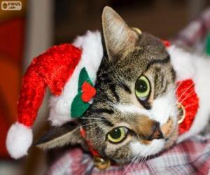 puzzel Kat met een Santa Claus hoed