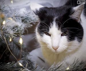 puzzel Kat met Kerstmis