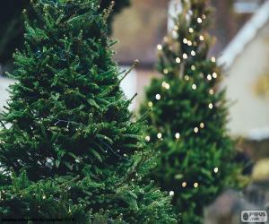puzzel Kerstbomen met lampjes