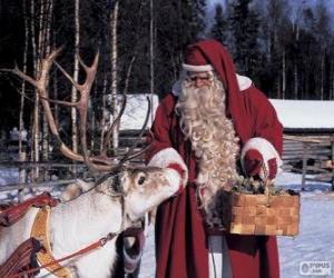puzzel Kerstman geven voeden de rendieren