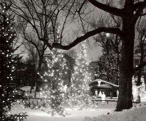 puzzel Kerstmis in het Park