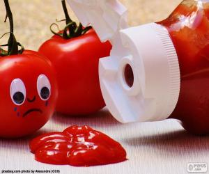 puzzel Ketchup