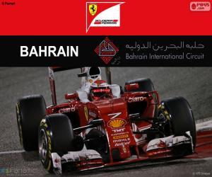 puzzel Kimi Räikkönen G.P Bahrein 2016