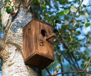 puzzel Klein huis van hout voor de vogels in het voorjaar