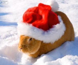 puzzel Konijn met een kerstmuts