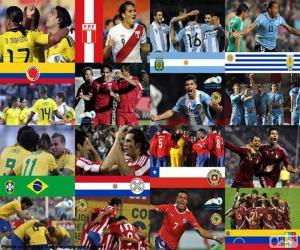 puzzel Kwartfinales, Argentinië 2011