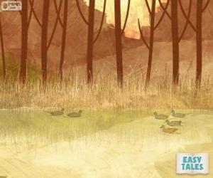 puzzel Lelijke eendje, zwemmen in de vijver met zijn broers