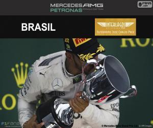 puzzel Lewis Hamilton, de Braziliaanse Grand Prix 2016