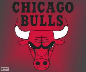 puzzel Logo Chicago Bulls, NBA-team. Central Division, Eastern Conference