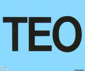 puzzel Logo van Teo