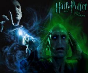 puzzel Lord Voldemort is de belangrijkste vijand van Harry Potter