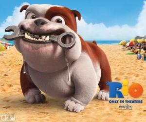 puzzel Luiz, een bulldog