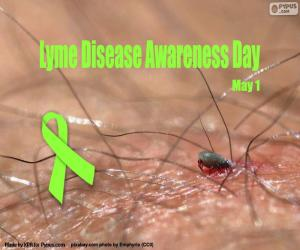 puzzel Lyme Ziekte Bewustzijnsdag