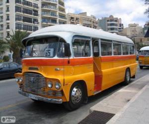 puzzel Malta bus