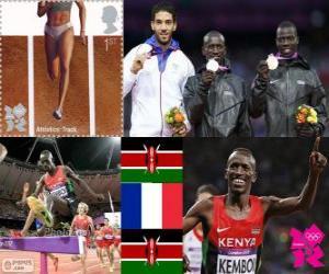 puzzel Mannen 3000 m steeplechase Londen 2012