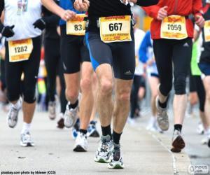 puzzel Marathon