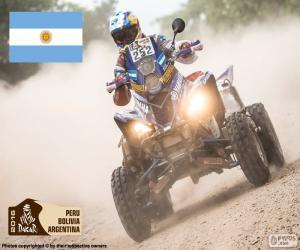puzzel Marcos Patronelli, Dakar 2016