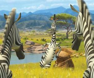 puzzel Marty praten met andere zebra's