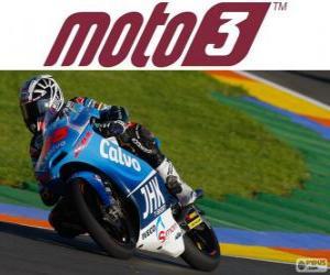 puzzel Maverick Viñales, 2013 wereldkampioen van Moto3