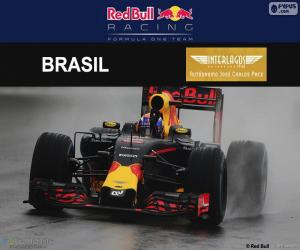 puzzel Max Verstappen, de Braziliaanse Grand Prix 2016