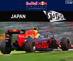 puzzel Max Verstappen, Grand Prix van Maleisië 2016