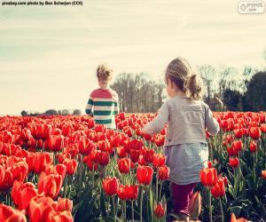 puzzel Meisjes tussen de tulpen