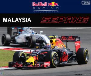 puzzel M.Verstappen, Grand Prix van Maleisië 2016