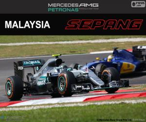puzzel N. Rosberg, Grand Prix van Maleisië 2016