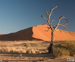 puzzel Namibwoestijn, Namibië