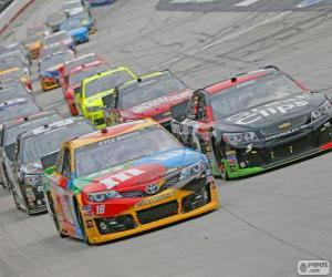 puzzel NASCAR Sprint Cup Series