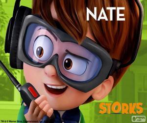 puzzel Nate, Ooievaars