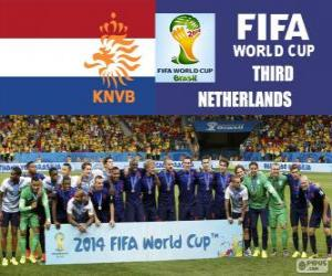 puzzel Nederland 3e ingedeeld van de Brazilië 2014 Football World Cup