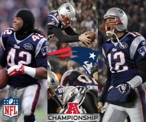 puzzel New England Patriots AFC kampioen 2011