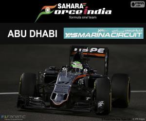 puzzel Nico Hülkenberg, Grand Prix van Abu Dhabi 2016