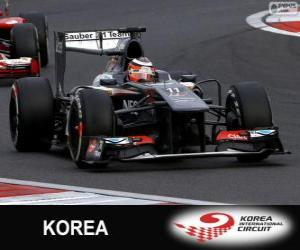 puzzel Nico Hülkenberg - Sauber - Korea internationale Circuit, 2013