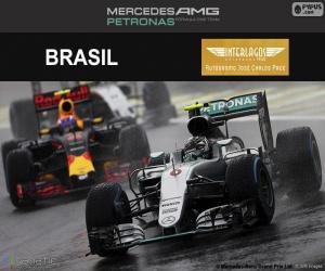 puzzel Nico Rosberg, Grand Prix van Brazilië 2016
