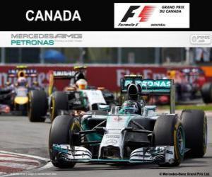 puzzel Nico Rosberg - Mercedes - Grand Prix van Canada 2014, 2º ingedeeld
