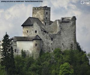 puzzel Niedzica kasteel