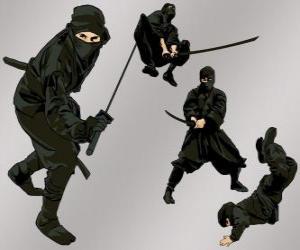 puzzel Ninja in verschillende posities