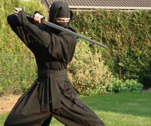 puzzel Ninja strijder en het gevecht met de katana