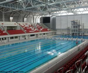 puzzel Olympisch zwembad