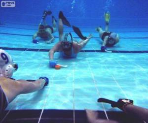 puzzel Onderwaterhockey
