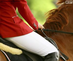 puzzel Paard en ruiter