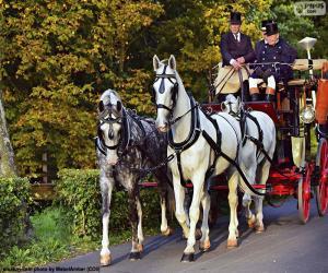 puzzel Paard en wagen