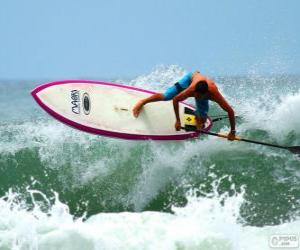 puzzel Paddle surf
