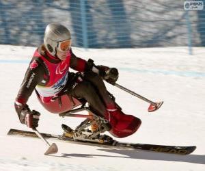 puzzel Paralympische skiër in de slalom