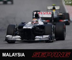 puzzel Pastor Maldonado - Williams - Sepang 2013