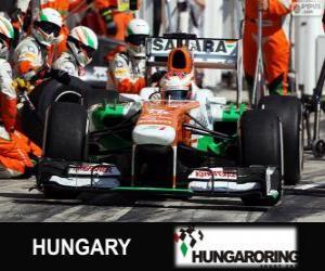 puzzel Paul di Resta - Force India - Hungaroring, 2013
