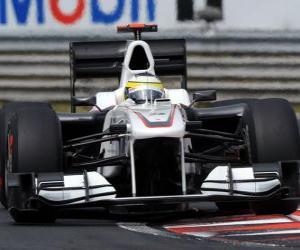 puzzel Pedro de la Rosa-Sauber - 2010 Hongaarse Grand Prix